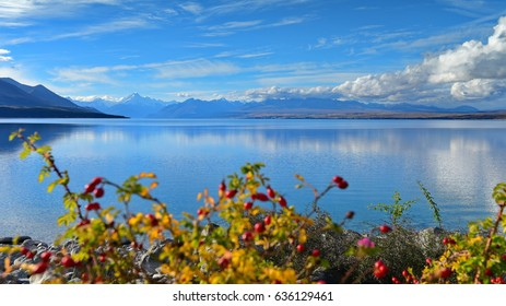 Lake Pukaki with Mount Cook and mountain ranges in the background, in Canterbury, New Zealand