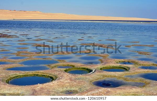 Lake Qarum Egypt Strange Holes Desertic Stock Photo (Edit