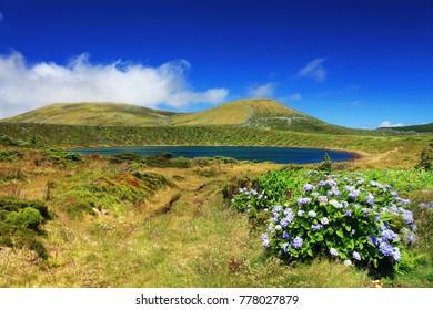 Lake Rasa, Flores Island, Azores, Portugal, Europe
