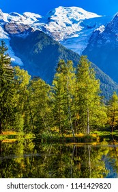The lake reflected the evergreen spruce. Picturesque park in the mountain resort of Chamonix, at the foot of Mont Blanc. Concept of active and ecological touris