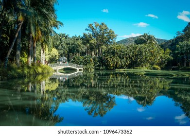 A lake with reflection of the trees above a blue sky at Inhotim, Minas Gerais