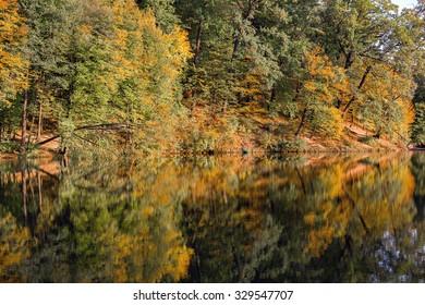 Lake reflections of fall foliage. Colorful autumn foliage casts