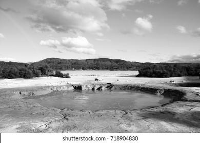 Lake Rotorua - beautiful landscape in New Zealand. Black and white vintage style.