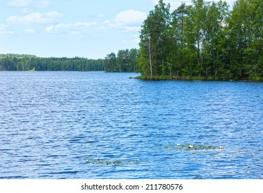 Lake Rutajarvi summer view with forest on the edge and water lily on surface (Urjala, Finland).