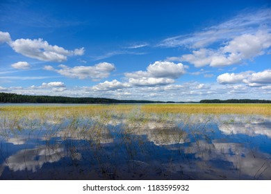 Lake scenery in august