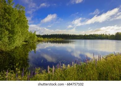 Lake scenery in morning light