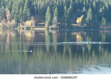 Lake Schluchsee, Black Forest, Germany
