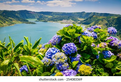 Lake of Sete Cidades with hortensia's, Azores, Portugal Europe