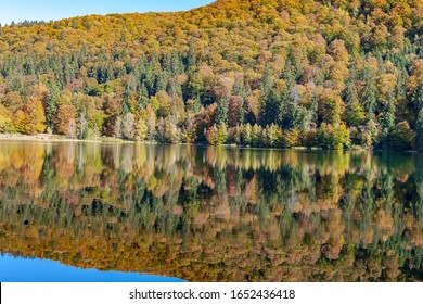 Lake Sf. Ana, Romania,  Octombrie 2019: is the only crater lake in Romania located in the volcanic crater of the volcano named Ciomatu Mare, Eastern Carpathians, in the Natural Reserve of Mohoș.