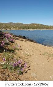 Lake shore path; Big Bear Lake, California