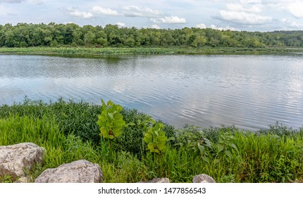 Lake in Springfield, MO during the daytime at Springtime