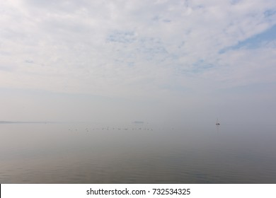Lake Steinhude with seagulls, boats and island Wilhelmstein in special light mood with fog