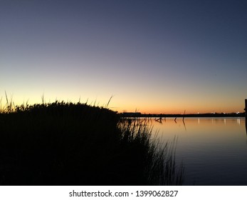 Lake at the sunset and flovers
