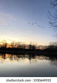 Lake Sunset with Geese Flying