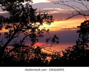 Lake Superior sunset framed through vegetation