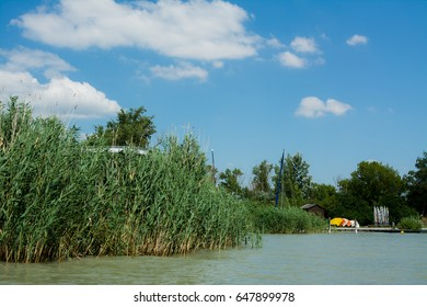 Lake surrounded by green bushes and blue sky in the background