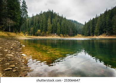 Lake surrounded by mountains and fir forest