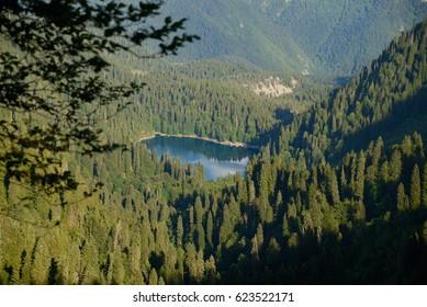 Lake, surrounded by mountains and forests, Malaya Ritsa, Abkhazia,