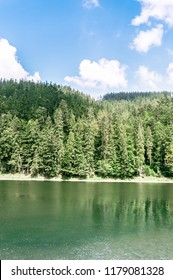 Lake Synevir in the mountains. Carpathian mountains. Summer phot