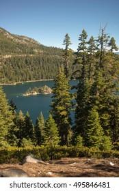 Lake Tahoe through trees