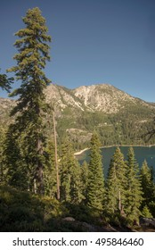 Lake Tahoe through trees with mountain in background