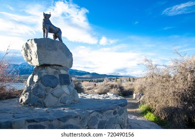 Lake Tekapo, South Island, New Zealand. – On July 17, 2016 - Mackenzie Sheep Dog, The bronze statue of the dog on the shores of Lake Tekapo in a beautiful day with blue sky.