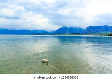 Lake Thun and Alps Mountains in the city of Thun, Switzerland