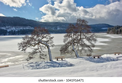 Lake Titisee in winter. Black Forest, Germany.