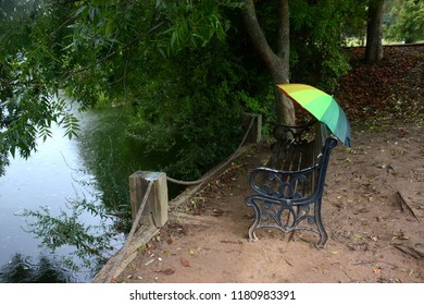 lake and trees, colourful umbrella
