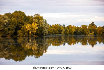 Lake and Trees Reflection with Sky