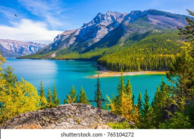 The lake with turquoise water is surrounded by coniferous forests. Lake Two Jack in the Rocky Mountains of Canada. The concept of ecological and active tourism. Banff National Park