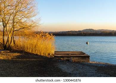 Lake Varese. Views from Schiranna and gavirate areas. Winter light, seagulls and swans
