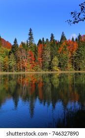 lake view artvin /savsat