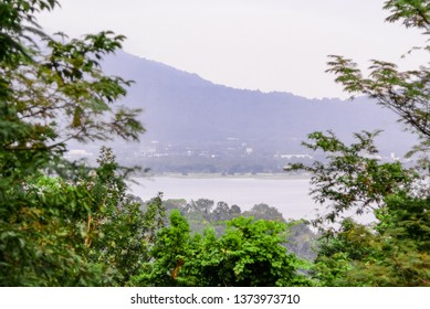 Lake view from mountain with tree top foreground