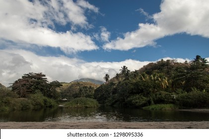 Lake view with palms, mountains and cloudy sky on Martinique island