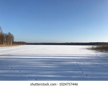 The lake view under snow, forest, ice, sun, winter day
