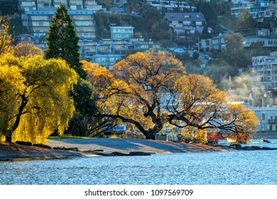 The lake Wakatipu with colourful trees near Queenstown in Autumn south island of New Zealand.