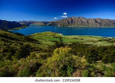 Lake Wanaka, South Island, New Zealand