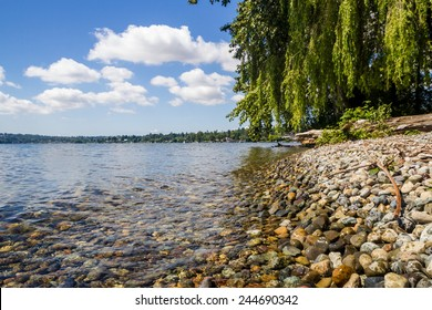 Lake Washington, as seen from Seward Park, in Seattle, Washington
