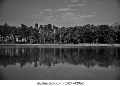 Lake water with trees around the lakeshore area unique photo