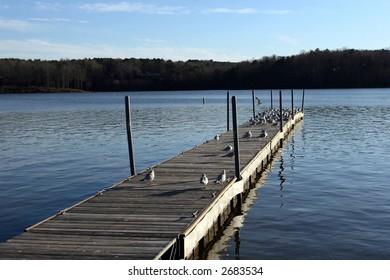 Lake Wheeler, Raleigh NC