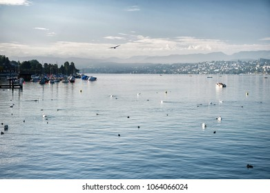 Lake Zurich in the morning