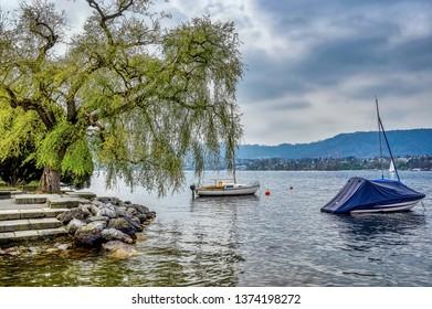Lake Zurich in Spring time