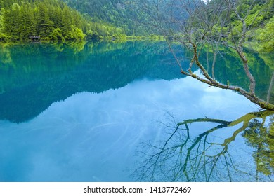 Lakes and dry branches in the mountains of jiuzhaigou.A lake surrounded by mountains reflects peaks and dead branches in China's jiuzhaigou scenic area.Blue lakes and green mountains。