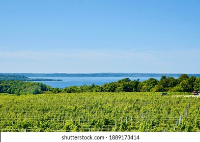 Lakeshore scenery with vineyard on Old Mission Peninsula, Traverse City, Michigan. Grapevines