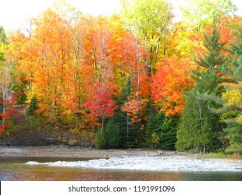 Lakeside fall colours