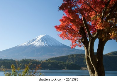 Lakeside view of Mount Fuji with beautiful Fall leaves in foreground