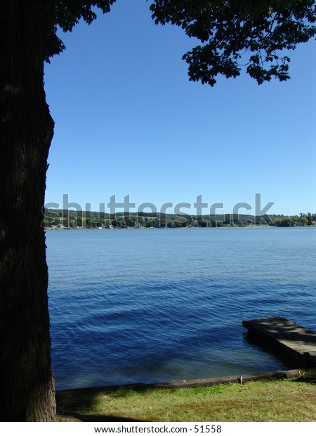 Lakeside View on a Sunny Day