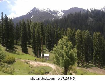 lalazar valley Naran, Pakistan (2015). An amazing lush green valley