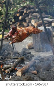 Lamb being roasted whole on a spit over open fire in medieval settings